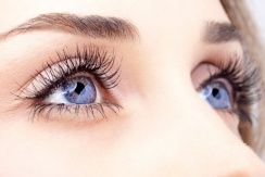 ����������� ������������� ������ LVL Lashes � Beautier � 55% � ������ ������ � ��������� ������� �������
